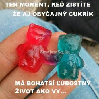 Medvedíci