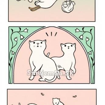 Bocian nesie mačiatka