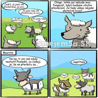 Vlk prezlečený za ovcu, ovca za vlka…