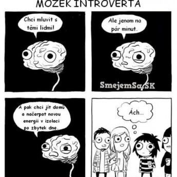 Mozog introverta