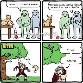 Mačky a gravitácia