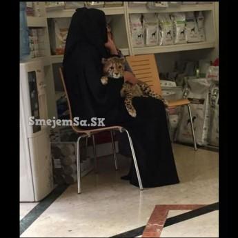 U veterinára v Dubaji