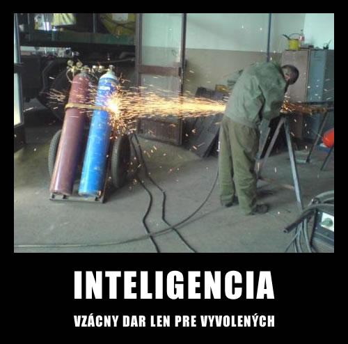 inteliencia1