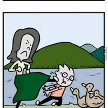Kŕmenie kačiek