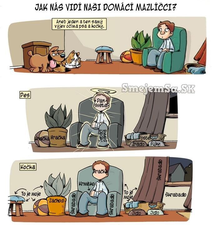 Ako Nas Vidi Pes A Macka Kreslene Obrazky Smejemsa Sk