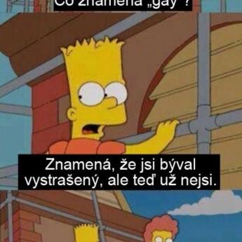 """Čo znamená """"gay""""?"""