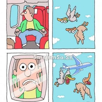 Vtipné kačky