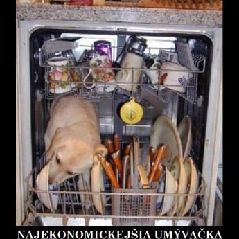 umývačka