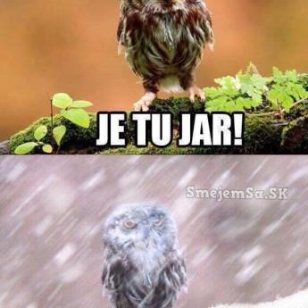 Zima či jar?!