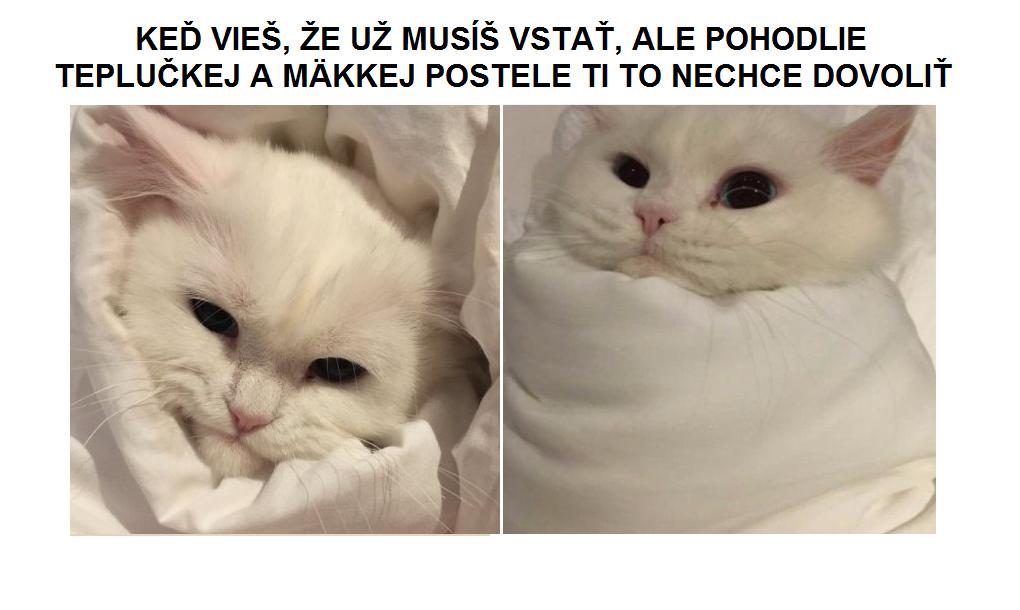v-posteli