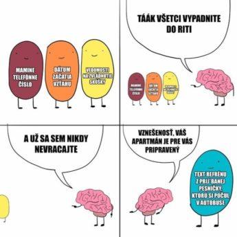 Ako funguje mozog…